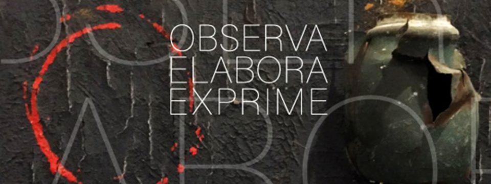 OBSERVA ELABORA EXPRIME di Luigi Merola